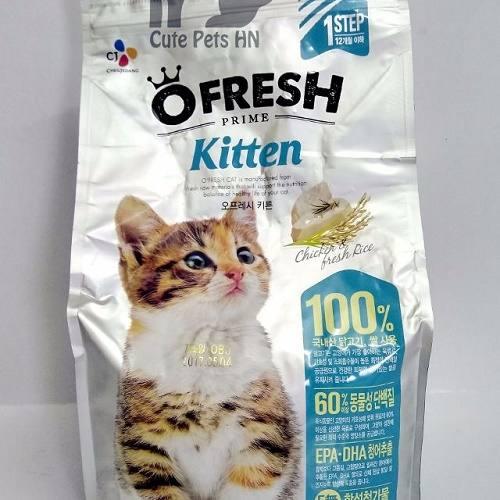 tự làm thức ăn cho mèo