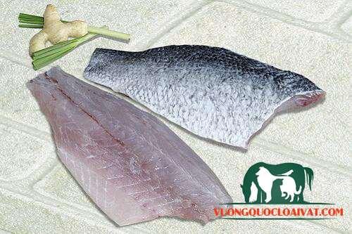 cá chẽm bao nhiêu 1kg