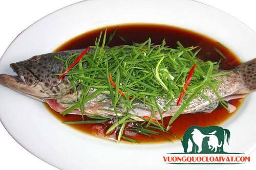 cá dìa hấp xì dầu