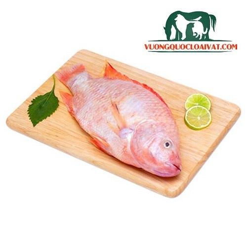 cá diêu hồng nấu ngót