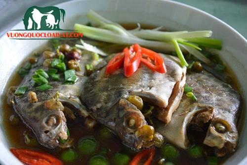 cá kình nấu ngót