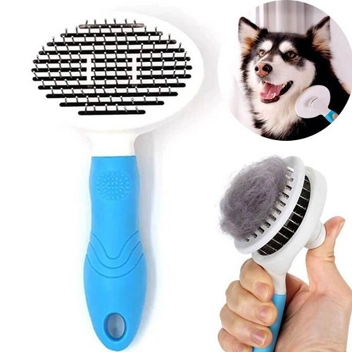 Lưu ý khi chọn mua lược chải lông chó