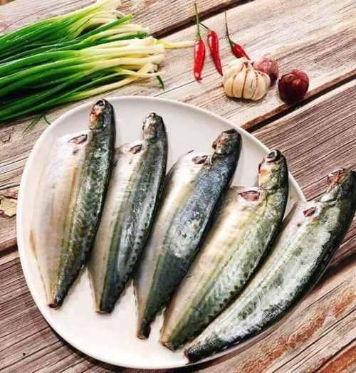 cá bạc má tiếng anh là gì