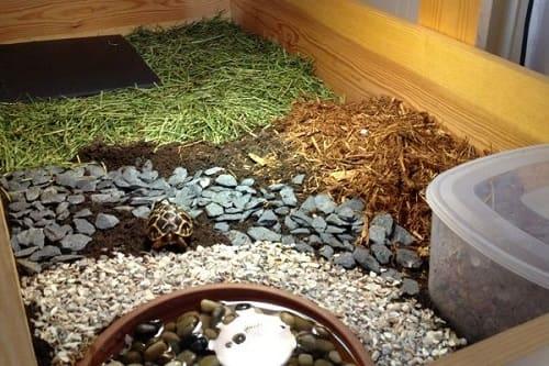 chuồng nuôi rùa núi viền