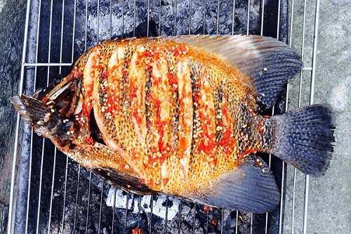 Cá nanh heo sông nướng