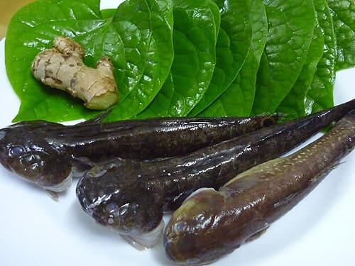 cá nấu lá lốt